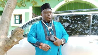 Igbo Community Set To Honour Chief Apollos With Award Of Excellence In Humanitarian Services