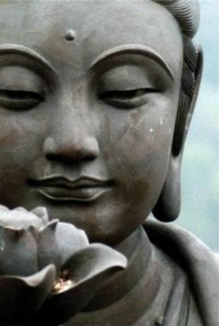 Bases del Budismo  Un Paseo por el Budismo