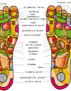 Gratis download best foot reflexology chart updated also gungoz  eye rh