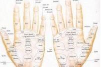 HANDS CHART
