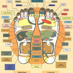 Foot Massage Therapy Diagram Cat5 Poe Wiring Modern Institute Of Reflexology