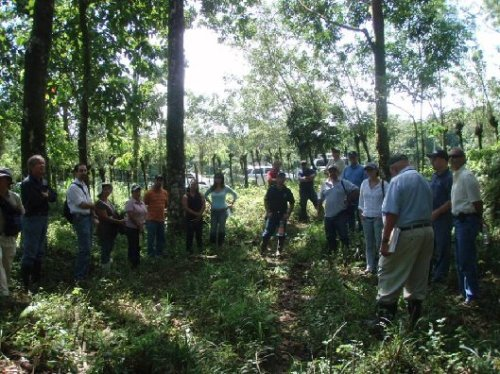 Dr. Barres lecturing to 25 Costa Rican foresters and farmers