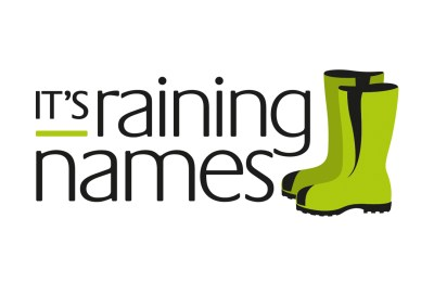 It's Raining Names. Branding, Website Design and Build