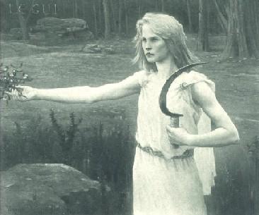 Image - druid, mistletoe, sickle