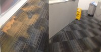 Carpet Water Damage Images, Before and After 0488 963 678 ...