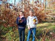 Nature Studies_Kids_School Groups_Fall