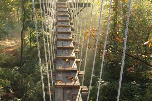 Aerial Excursion_Zipline_Activities