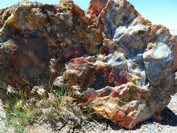 Opal is found in abundance in Australia