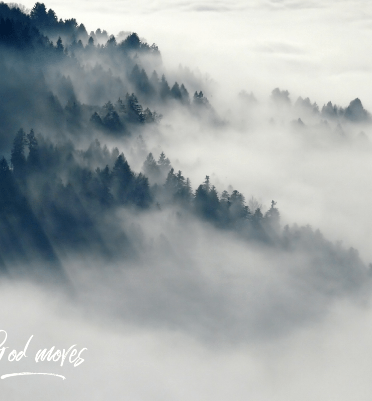 The Fog Isn't So Scary Now..Here's Why
