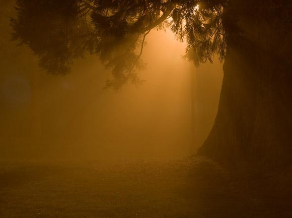 fotografia-noche-8