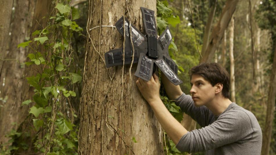 Rainforest-Connection