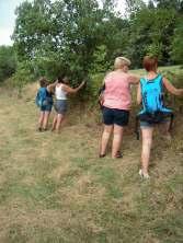 Regain Mure Ardeche - Plantes sauvages7