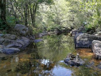 Regain-Mure-Ardeche-Nature60