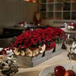 Cómo hacer un arreglo de mesa de Navidad con flor de Pascua
