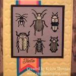 Bleaching Beetles & Bugs, FMS268