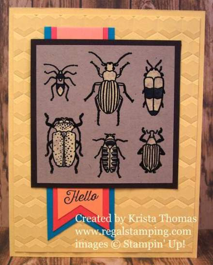 Bleach Technique with Beetles & Bugs, 2017 Stampin' Up! Occasions Catalog, by Krista Thomas, www.regalstamping.com