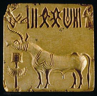unicorn-seal_0