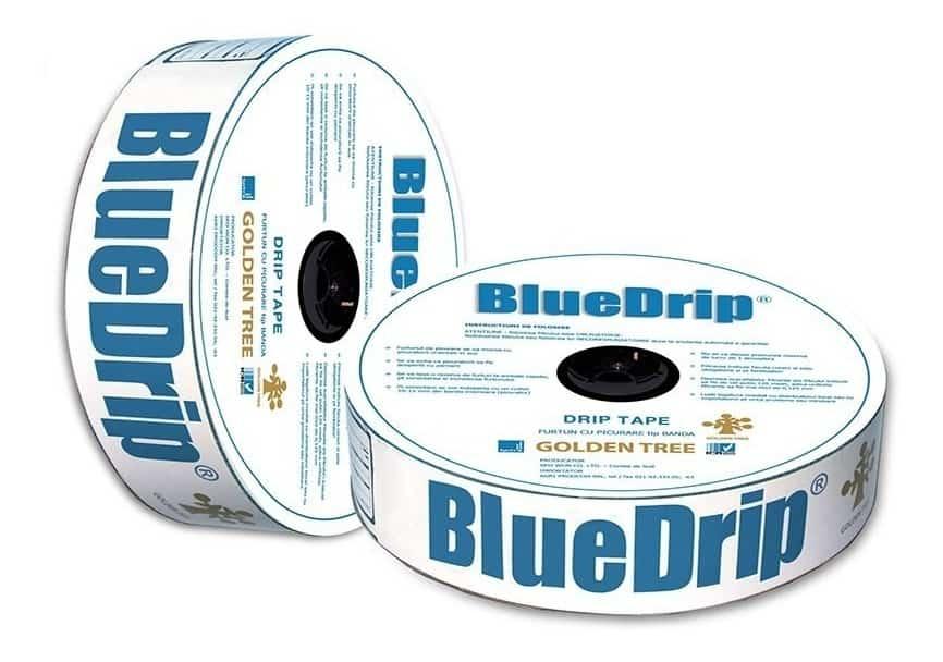 BlueDrip
