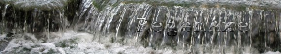waterfall-header-21.jpg
