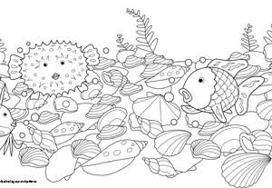 Spiele & Basteln - Der Regenbogenfisch