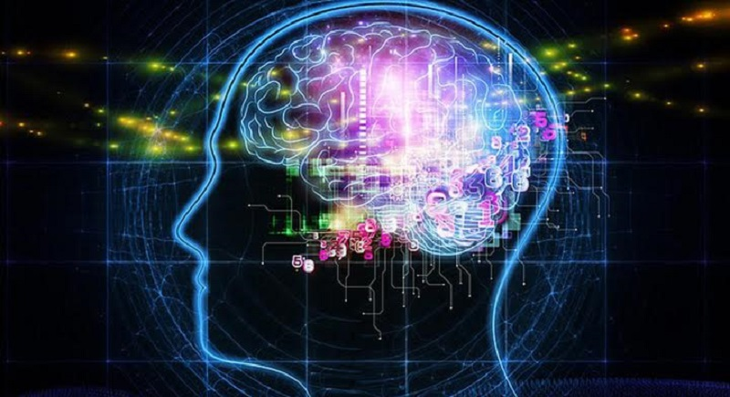 neurociencia - Soberanía científica