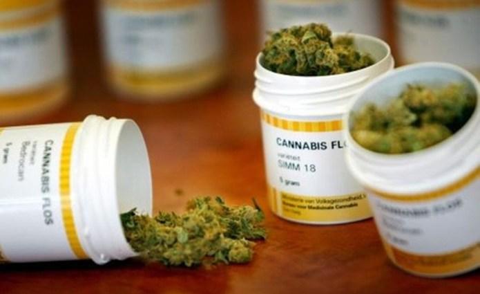 El cannabis medicinal no se considera como una droga: OMS