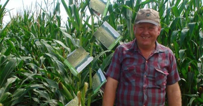 Comando armado secuestra a activista menonita anti Monsanto