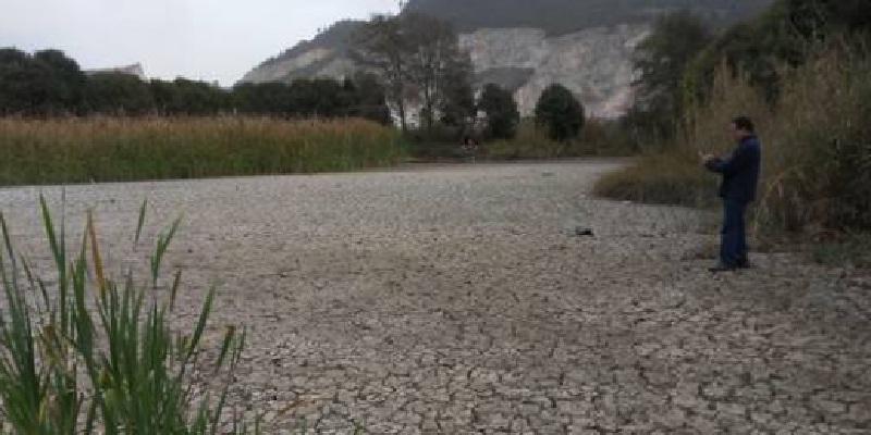 Se pierden más del 50% de los humedales en San Cristóbal, Chiapas