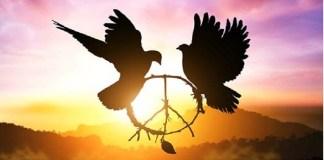 palomas, símbolo del amor y paz universal, cristo