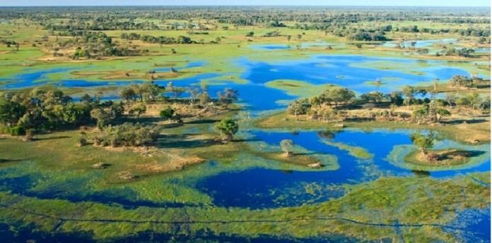 Humanidad, orígenes al sur de África