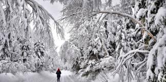 Bajas temperaturas aumentan la transmisión del Covid-19: estudio