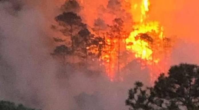 Oaxaca pide declaratoria de emergencia en 13 municipios por incendios