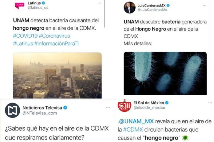 Desmiente la UNAM notas sobre el hongo negro