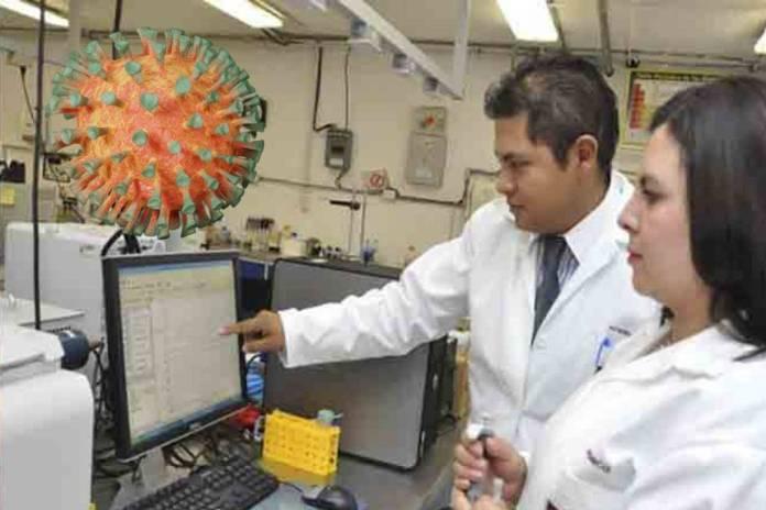 IPN desarrolla fármaco para inhibir el ingreso del Covid-19 en el cuerpo