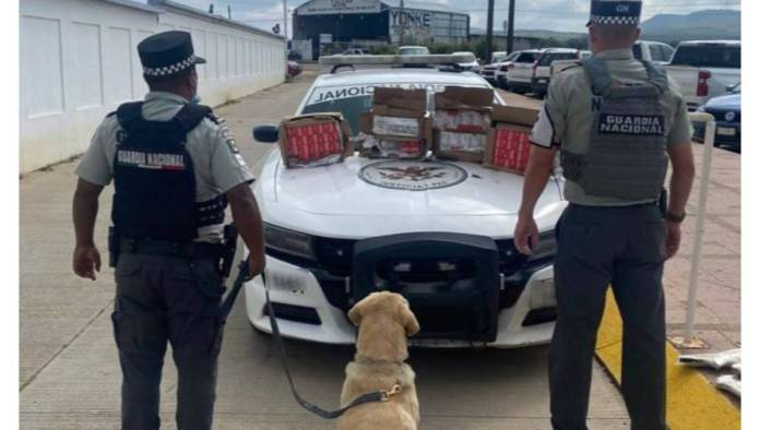 Guardia Nacional detiene tráiler con armas y cartuchos en Zacatecas