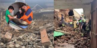 Santuario de lomitos se derrumba; rescatan a más de 11