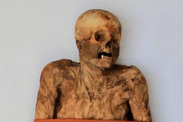 Encuentran a tres 'parientes' vivos de una momia del siglo XVIII