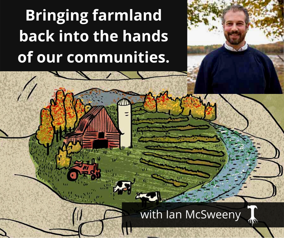 Bringing farmland back into the hands of our communities, with Ian McSweeny of The Agrarian Trust