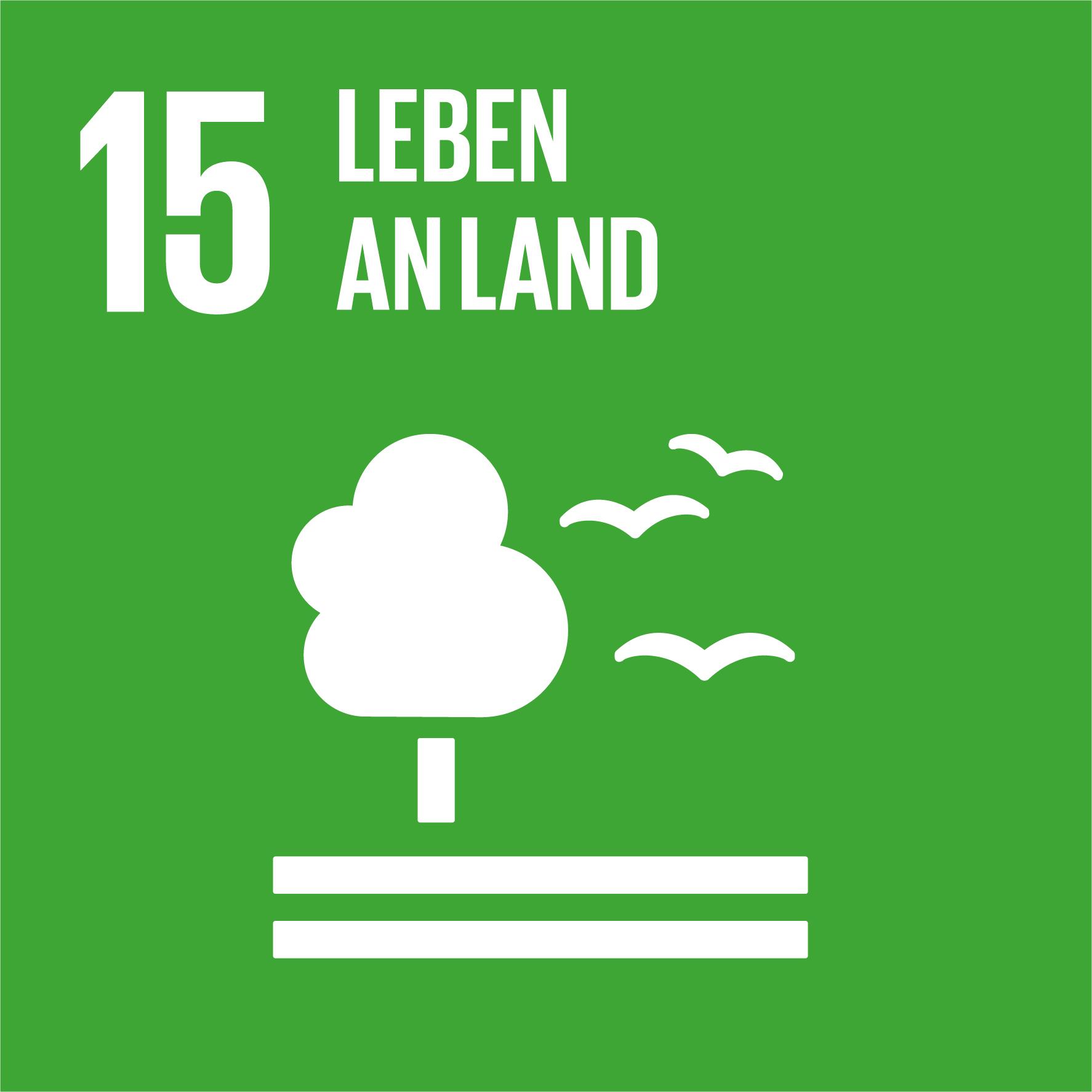 Regensburger Nachhaltigkeitswoche - SDG 15