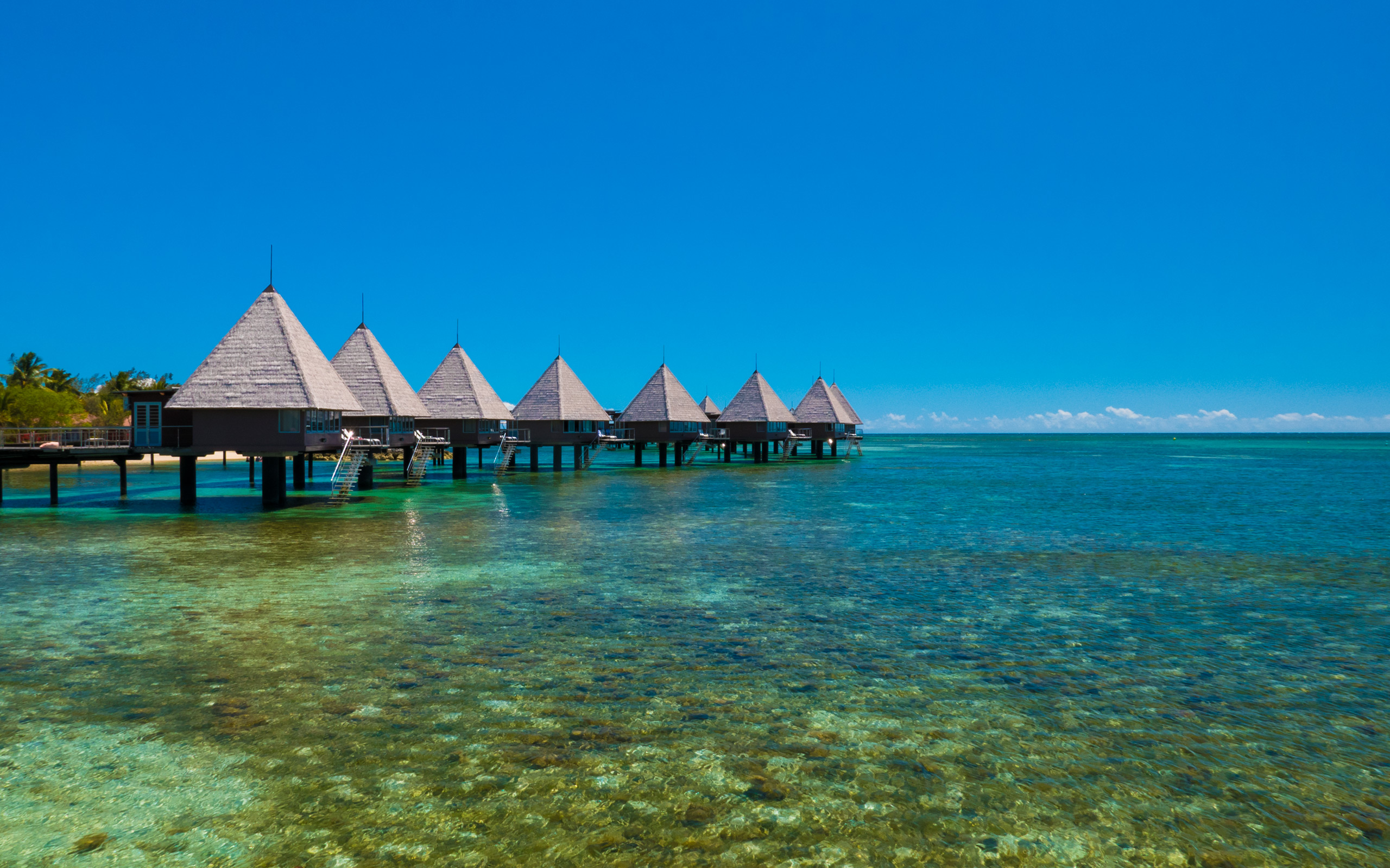 Wallpapers For Desktop Fall Colors Jeffrey Friedl S Blog 187 Visiting New Caledonia