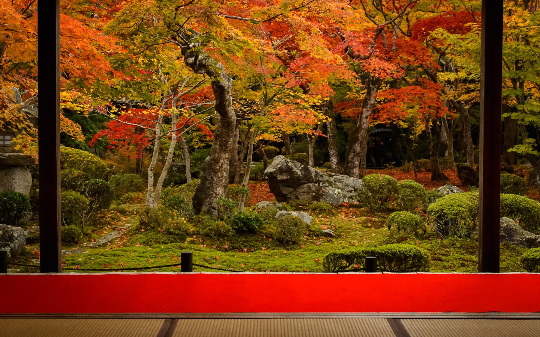 Fall Colors Desktop Wallpaper Jeffrey Friedl S Blog 187 Impossible Shot At Kyoto S Enkoji