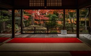 background temple desktop kyoto tea garden fall japan scene colors regex info 1920 nikkor nikon iso sec d4 24mm versions