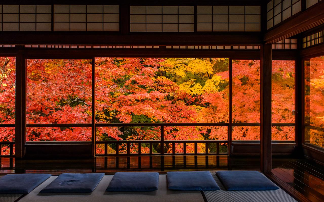 Japan Fall Colors Wallpaper Jeffrey Friedl S Blog 187 Photographer Introspection Amidst