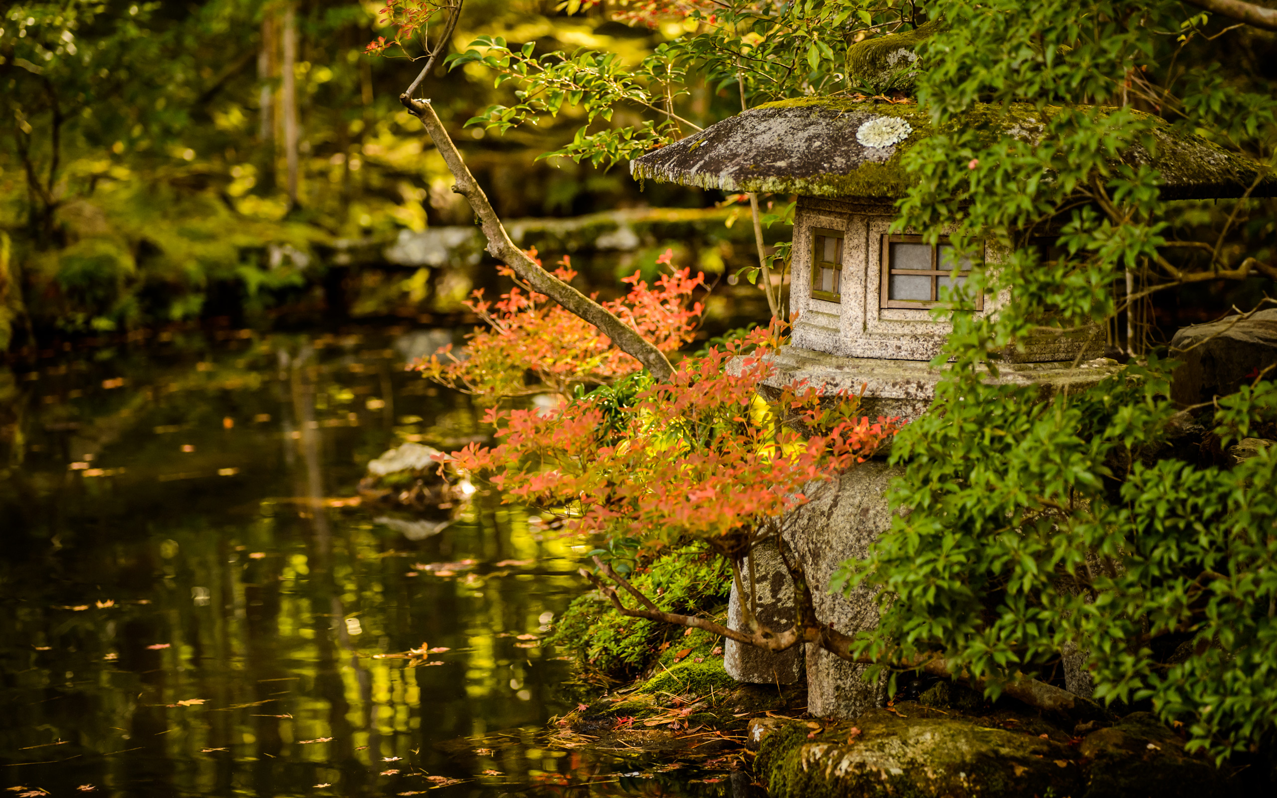 Fall Town Wallpaper Jeffrey Friedl S Blog 187 Paul Barr In Kyoto Day 1 The