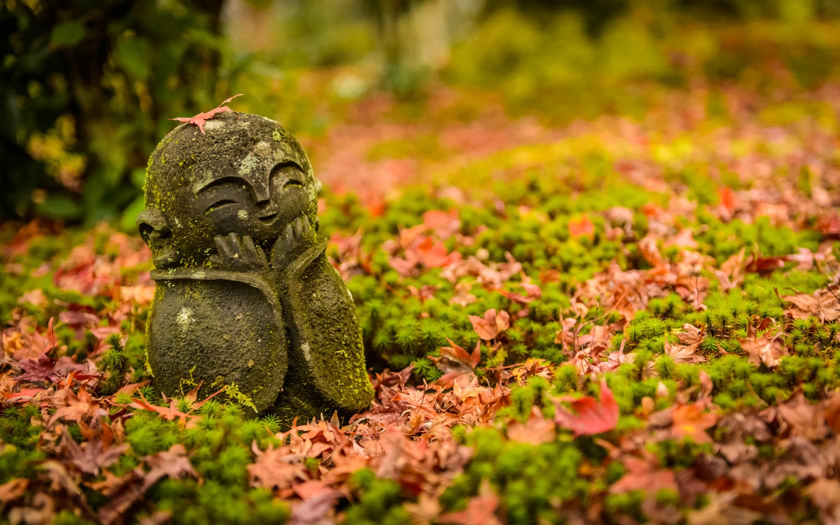 Cute Map Wallpaper Jeffrey Friedl S Blog 187 An Enkoji Temple Fall Foliage Preview