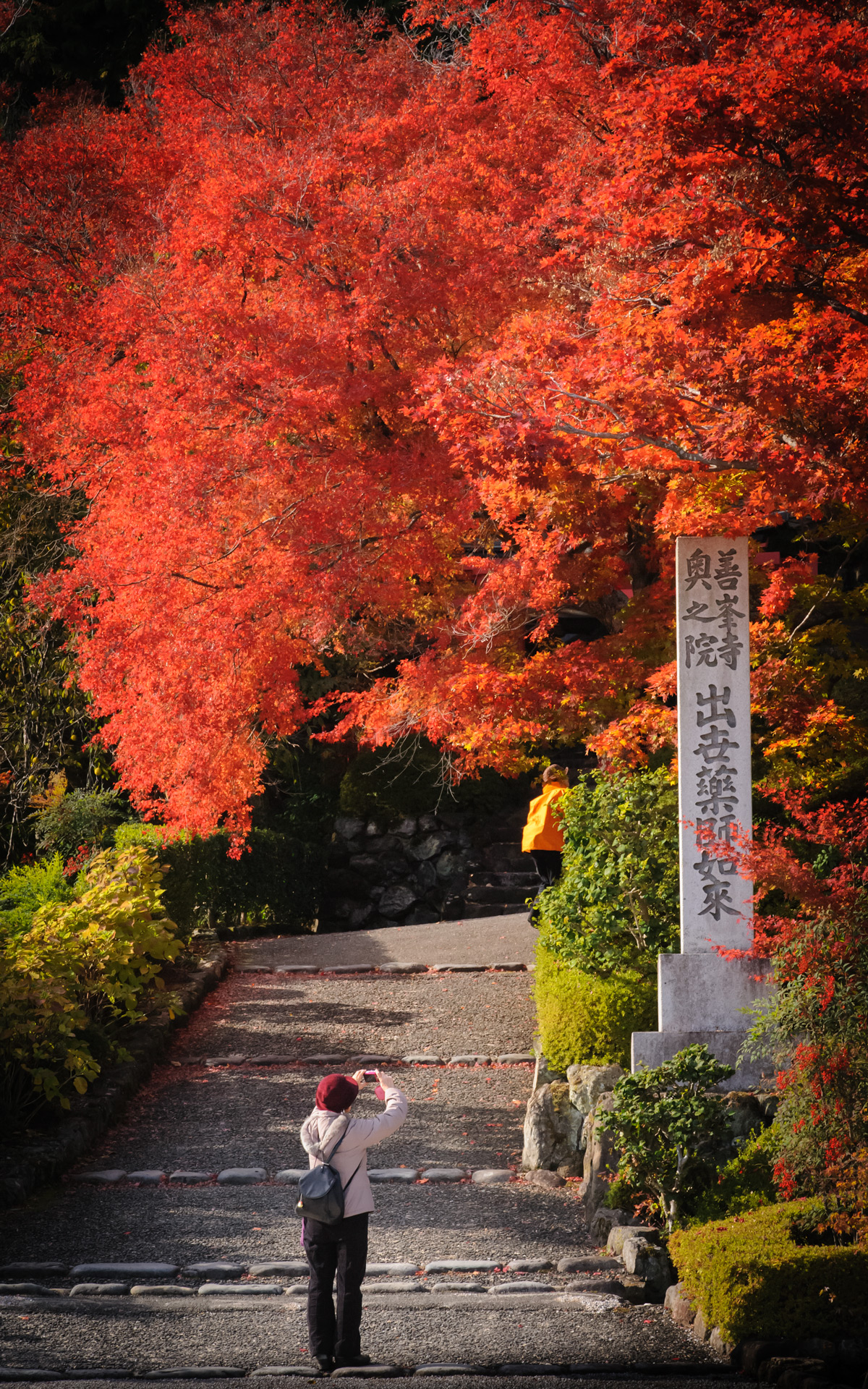 Fall Autumn Wallpaper Jeffrey Friedl S Blog 187 Kyoto Fall Foliage 2012 Preview A