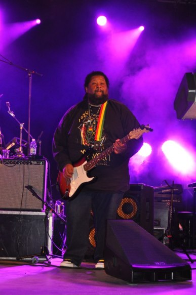 Guitar - Roger Lewis