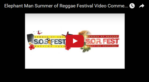 sosfest-videographic