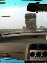 On the way to Jaipur - look at the small bakkie carrying people next to the lorry piled sky-high with logs!