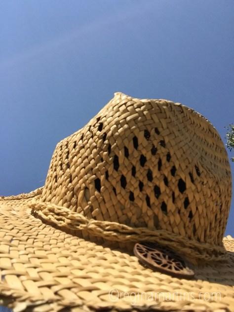 Sitting in the sun... © Regina Martins